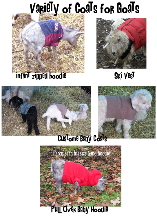 Variety of goat coats