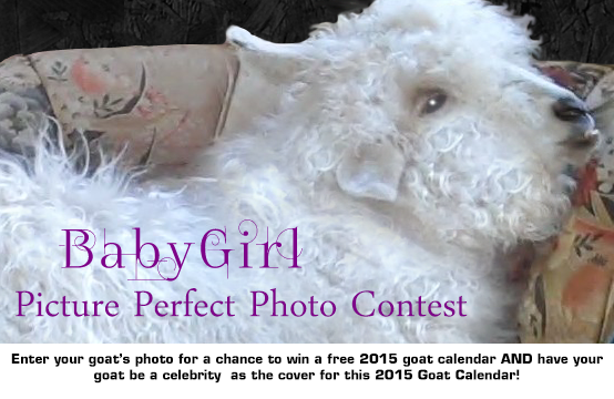 Enter the photo contest to Win
